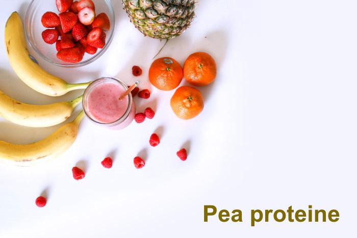 Pea proteine