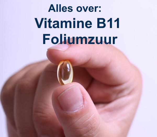 Vitamine B11 Foliumzuur